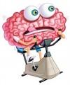 mozek_na_kole